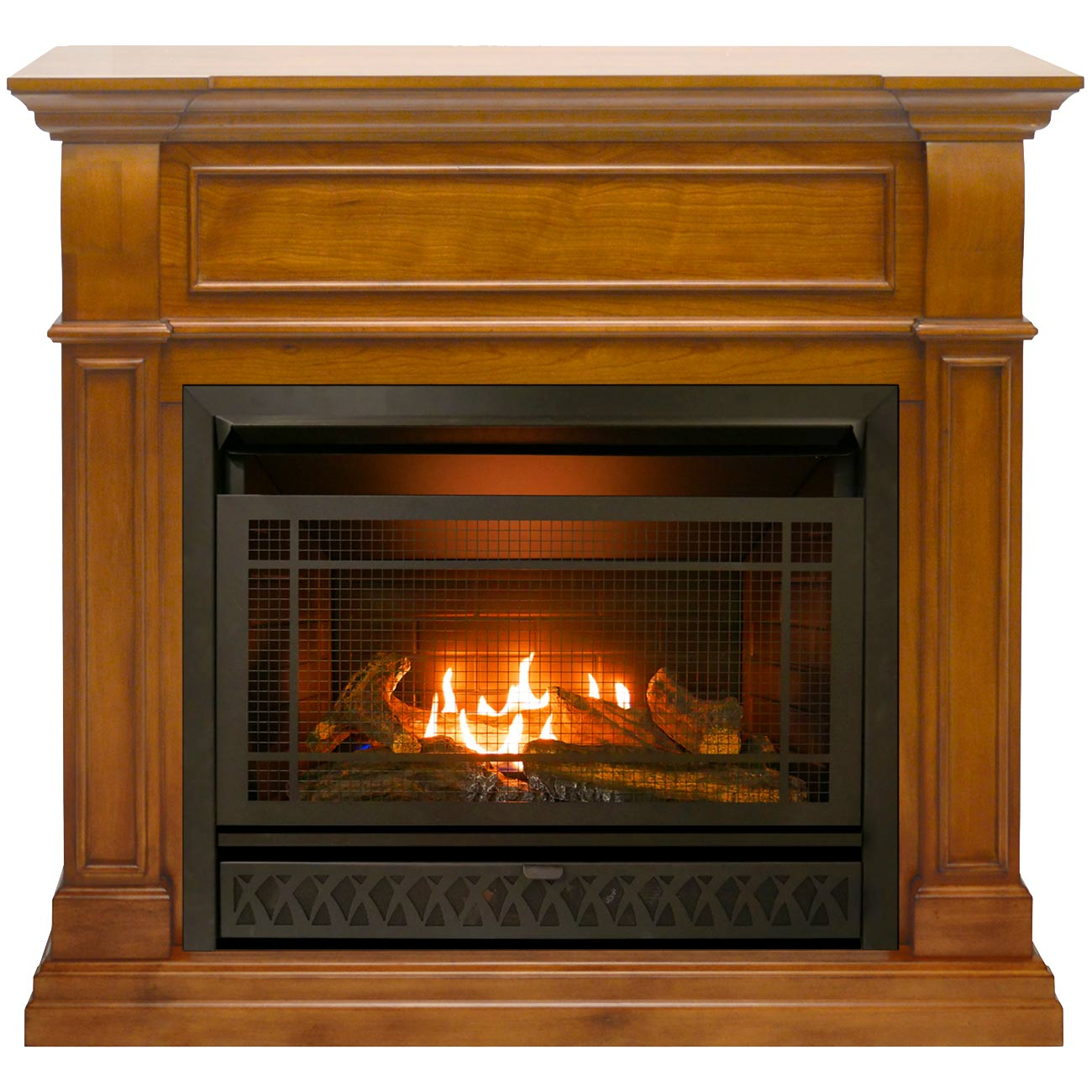 Procom Ventless Fireplace Dual Fuel Fireplace 26 000 Btu