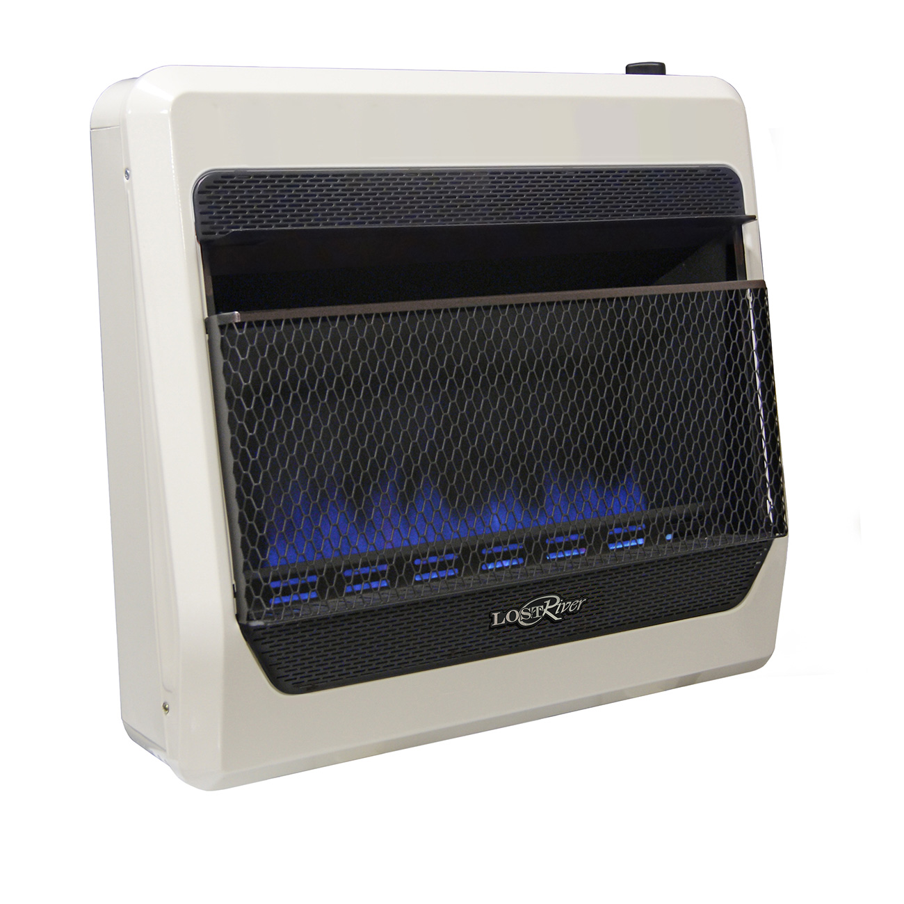 Lost River Dual Fuel Ventless Blue Flame Gas Space Heater